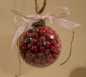 DIY Cranberry Glass Ornament