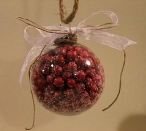 DIY Cranberry Glass Ornament