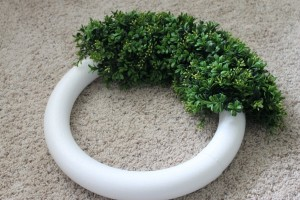Boxwood Wreath Progress